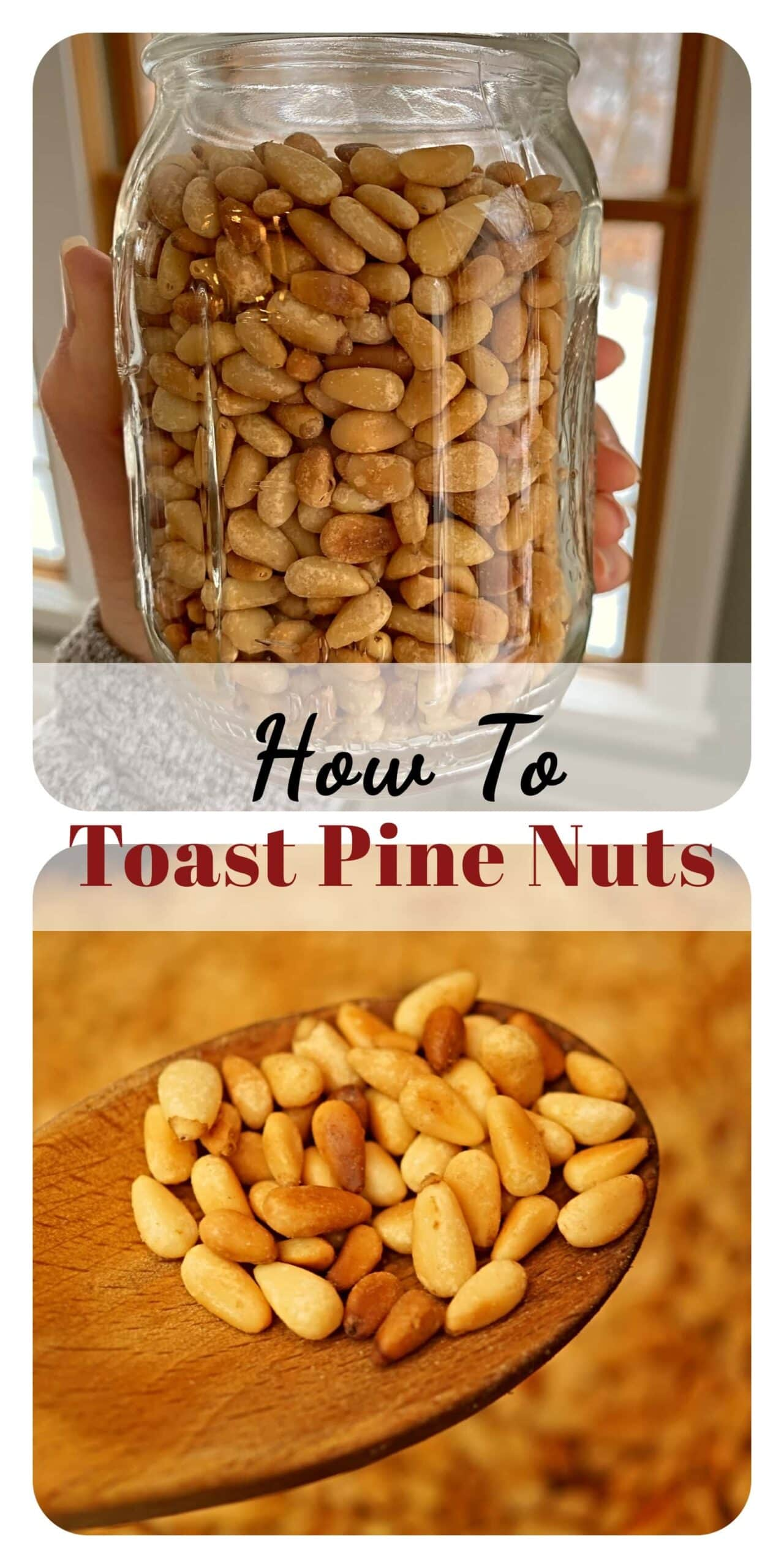 What are Pine Nuts and how are they used? Read here to find out how to toasts pine nuts and enhance your meals. Step-by-step instructions. -APinchOfAdventure