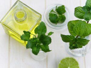 Mint and olive oil, Lebanese cuisine staples