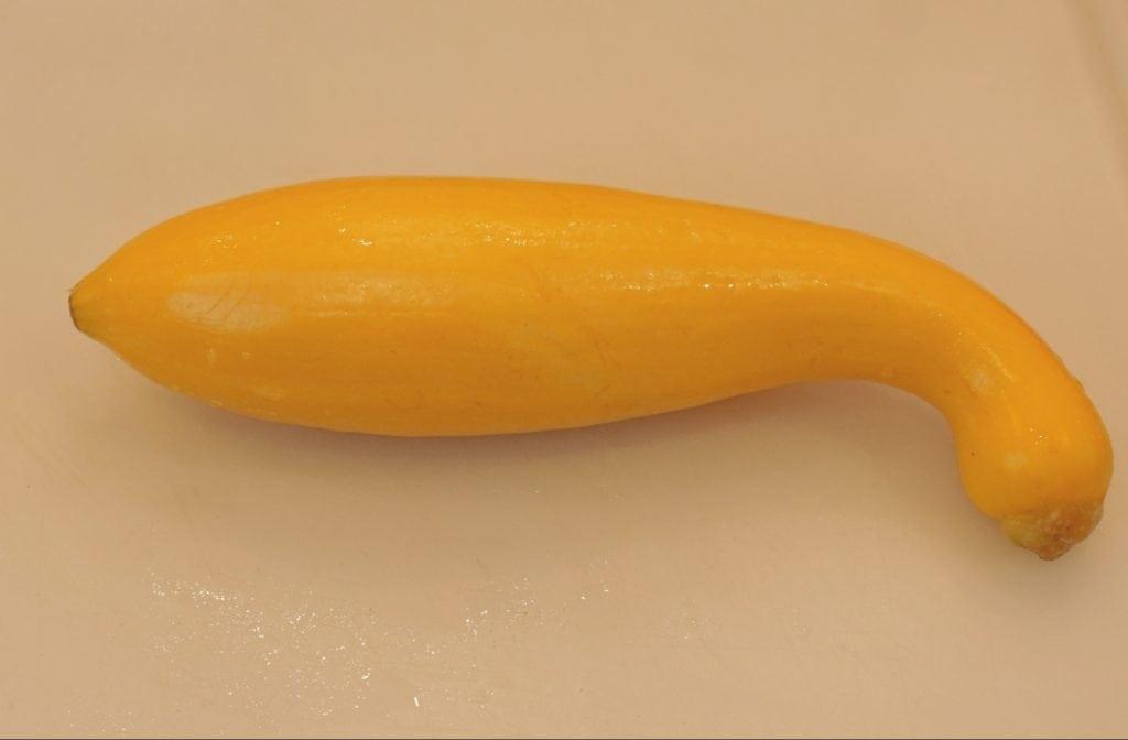 yellow crookneck squash for stuffed yellow squash recipe