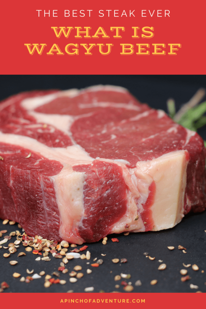 This post will answer all of your questions about what is wagyu beef and where to buy the best wagyu ever. Wagyu steaks are the best steak you will ever have in your life. Where to by Japanese beef can be tricky. Different cuts of meat and Japanese A5 wagyu are all explained easily in this post. Want to know what the best cut of steak is? Check out this article on wagyu meat from Japan
